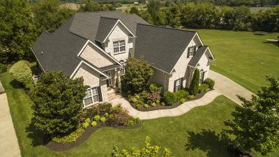 Murfreesboro Single Family Home For Sale: 737 Stone Mill Cir