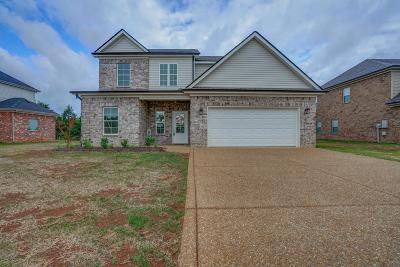 Smyrna Single Family Home For Sale: 1427 Wrangler