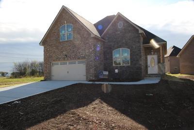 Murfreesboro Single Family Home For Sale: 5023 Asbury Rd