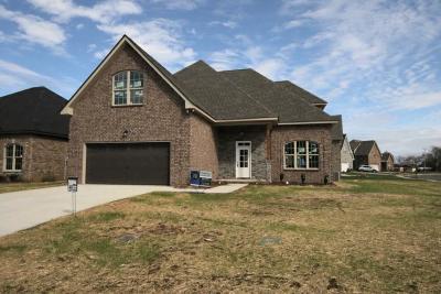Murfreesboro Single Family Home For Sale: 2804 Lightning Bug Dr