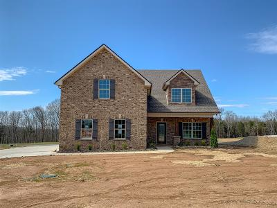 Murfreesboro Single Family Home For Sale: 1107 Sycamore Leaf Way