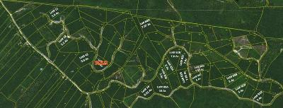Lobelville Residential Lots & Land For Sale: Rolling Hills Rd