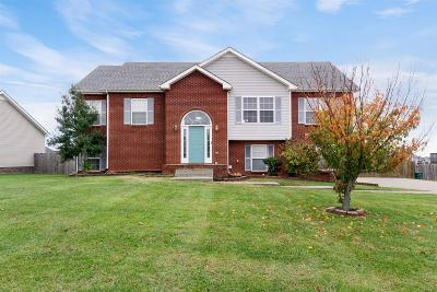 Clarksville Single Family Home For Sale: 3176 Twelve Oaks Blvd