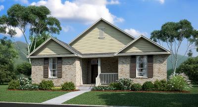 Hendersonville Single Family Home For Sale: 15590 Drakes Creek