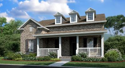 Hendersonville Single Family Home For Sale: 15599 Drakes Creek Road