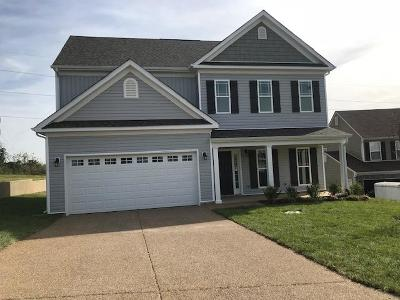 Spring Hill Rental For Rent: 7007 Cannonade Court