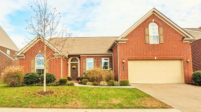 Nolensville Single Family Home For Sale: 2405 Orchard St