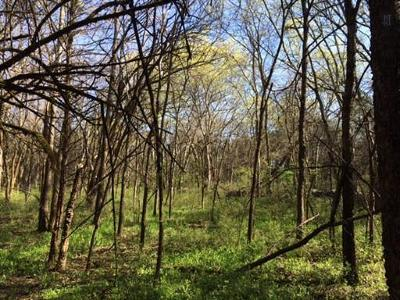 Rutherford County Residential Lots & Land For Sale: Jackson Ridge Rd
