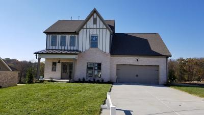 Smyrna Single Family Home For Sale: 4506 Lancaster Rd