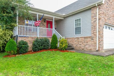 Antioch Single Family Home For Sale: 116 Firelight Ct