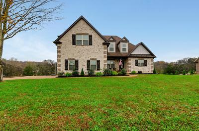 Mount Juliet Single Family Home For Sale: 5828 Benders Ferry Rd