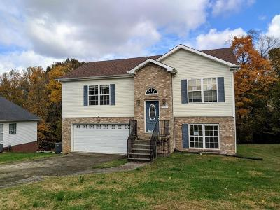 Clarksville Single Family Home For Sale: 87 West Dr