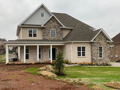 Smyrna Single Family Home For Sale: 508 McGrath Dr