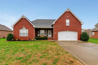 Clarksville Single Family Home For Sale: 991 Terraceside Cir