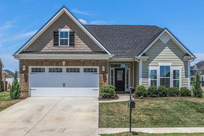 Single Family Home For Sale: 2834 Leipers Fork Trl