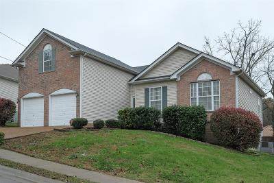 Antioch Single Family Home For Sale: 1520 Mount Mitchell Ct