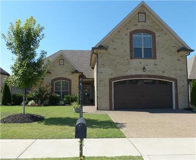 Hendersonville Single Family Home For Sale: 165 Ruland Cir