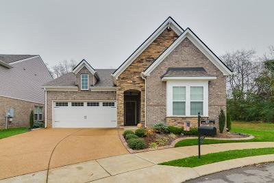 Mount Juliet Single Family Home For Sale: 649 Foster Ln