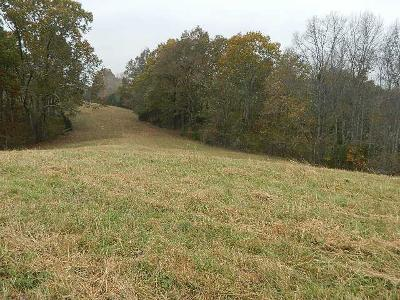 Spring Hill Residential Lots & Land For Sale: Ash Hill Rd