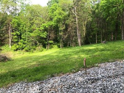 Residential Lots & Land For Sale: 1287 Sandy Valley Rd