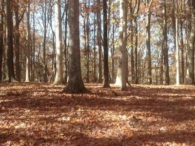 Residential Lots & Land For Sale: 281 Logger Ln