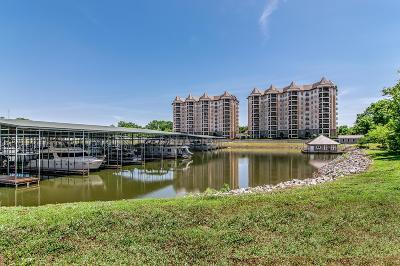 Cheatham County Condo/Townhouse For Sale: 400 Warioto Way #806