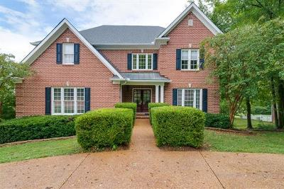 Franklin Single Family Home For Sale: 508 Sandcastle Rd