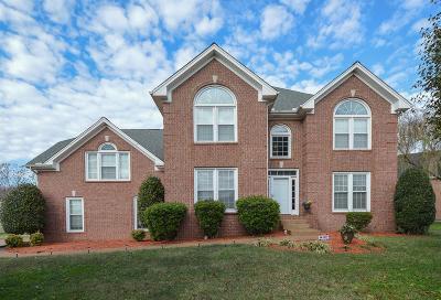 Hendersonville Single Family Home For Sale: 104 S Laurens Way