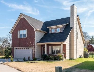 Sumner County Single Family Home For Sale: 1012 Harper Dean Way