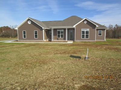 Mount Pleasant Single Family Home For Sale: 979 Presley Cir