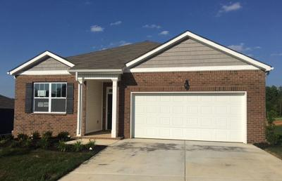 Montgomery Single Family Home For Sale: 260 Autumn Terrace Ln- Lot 169