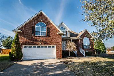 Sumner County Single Family Home For Sale: 540 Bradford Dr