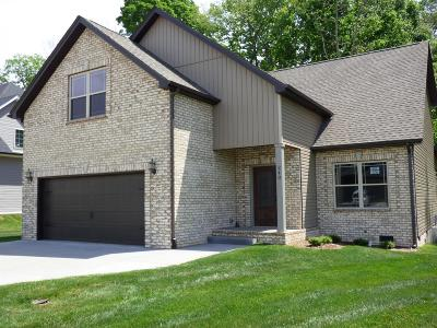 Clarksville Single Family Home For Sale: 240 Towes Ln
