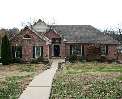 Lewisburg Single Family Home For Sale: 513 David Ave