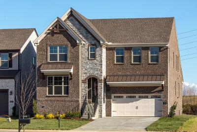 Mount Juliet TN Single Family Home For Sale: $459,900