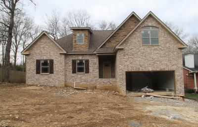 Mount Juliet TN Single Family Home For Sale: $424,700