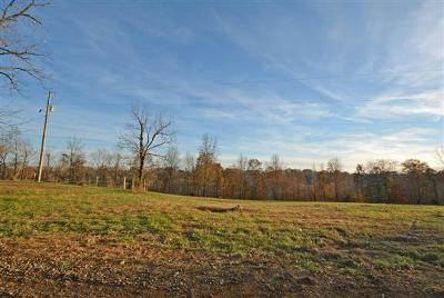 Indian Mound TN Single Family Home For Sale: $300,000