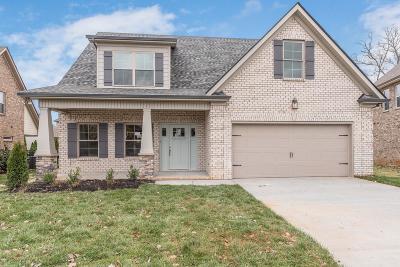 Murfreesboro, Rockvale Single Family Home For Sale: 1216 Hensfield Dr