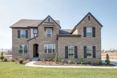 Williamson County Single Family Home For Sale: 2949 Stewart Campbell Pt