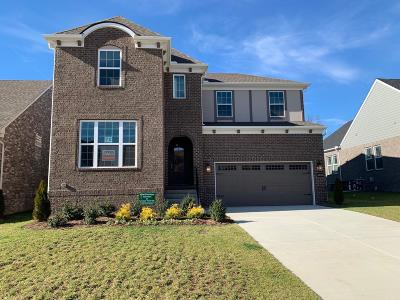 Mount Juliet TN Single Family Home For Sale: $449,900