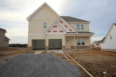 Lavergne Single Family Home For Sale: 417 Peak Top Trail (Lot 149)