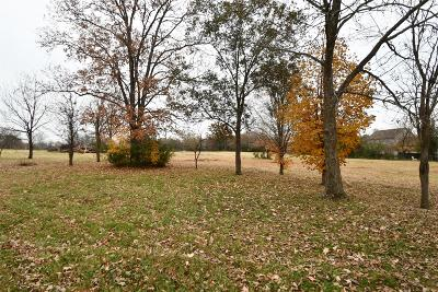 Wilson County Single Family Home For Sale: 1211 C Hartsville Pike