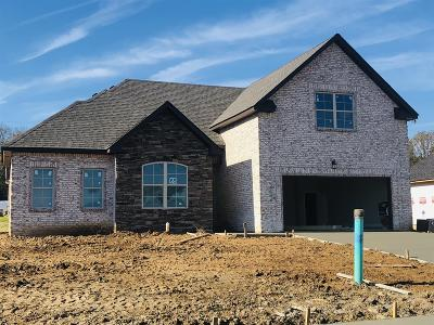 Smyrna Single Family Home Under Contract - Not Showing: 5504 Endurance Lane, Lot 65