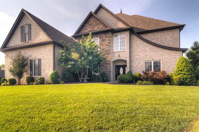 Clarksville Single Family Home For Sale: 346 Gray Hawk Trl
