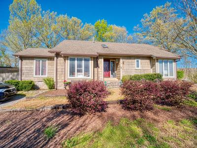 Mount Juliet Single Family Home For Sale: 229 Couchville Pike