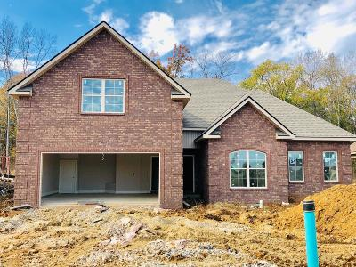 Smyrna Single Family Home Under Contract - Not Showing: 5308 Patience Dr, Lot 54