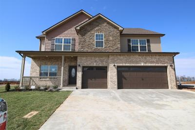 Christian County, Ky, Todd County, Ky, Montgomery County Single Family Home Under Contract - Showing: 174 Summerfield