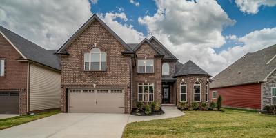 Clarksville Single Family Home For Sale: 121 Crosswinds