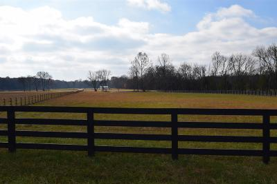 Franklin Residential Lots & Land For Sale: 2069 Wilson Pike