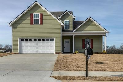 Spring Hill Single Family Home For Sale: 709 Mitscher Dr ( Lot 39)